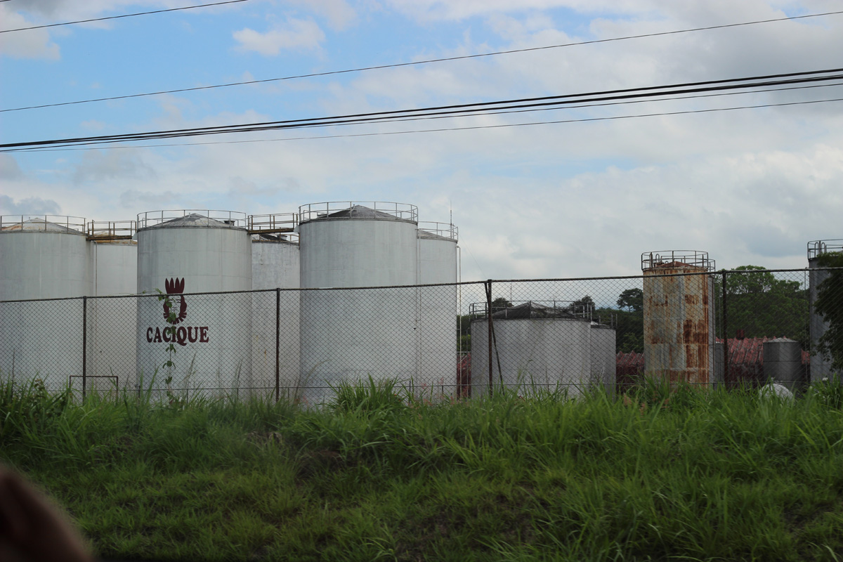 Cacique Guaro plant - sugar cane liquor