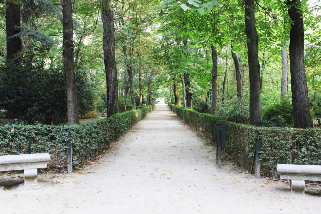 Path Down Buen Retiro Park Madrid IMG